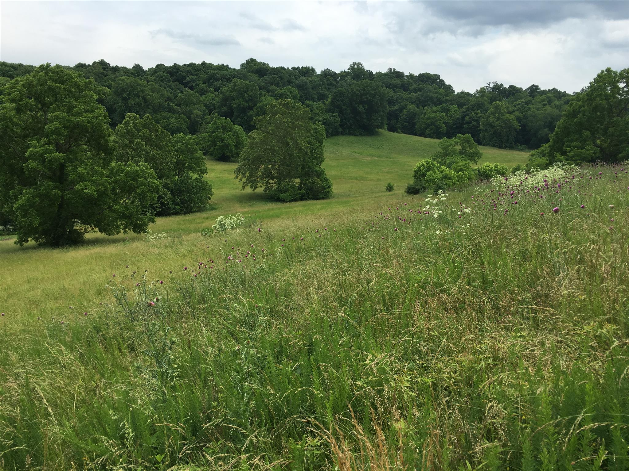 $4,195,000 - Br/Ba -  for Sale in Leipers Fork, Franklin